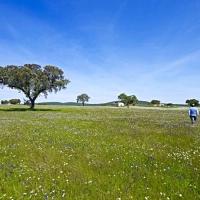 La Fundación Dolores Bas proyecta en su finca un huerto ecológico, un camping y un centro de interpretación entre otras actuaciones