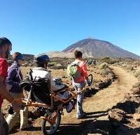 Servicios dirigidos a la discapacidad en Extremadura