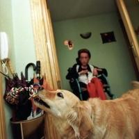 Extremadura regula los perros de asistencia a personas con discapacidad