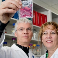 Llega el trasplante de células madre de nueva generación para los cánceres de sangre